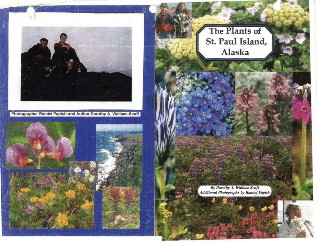 The Plants of St Paul Island Alaska 1024x786 - Wildflowers